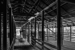 10-HistoricWoolshed_M_Erith_11-pts
