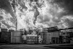 11-Pollution_M_Erith_13-pts